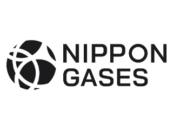 Nippon Gases Euro-Holding S.L.U. (Head Office)