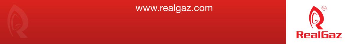 RealGaz LLC